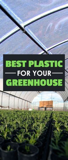 So you're building a greenhouse, but don't know what greenhouse plastic to use. Come read all you need to know in our greenhouse film buyer's guide!