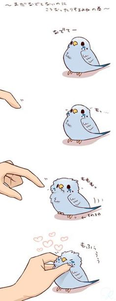 Soooooo cute little bird Cute Little Animals, Cute Funny Animals, Funny Cute, Cute Kawaii Drawings, Cute Animal Drawings, Dibujos Cute, Anime Animals, Cute Doodles, Cute Birds