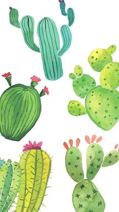 cute cactus wallpaper