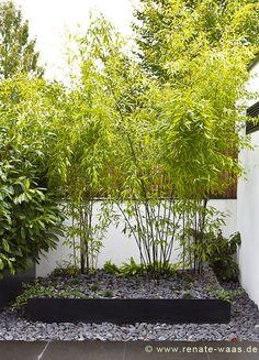 Amazing Beet Moderner Garten Bambus Eingang moderner Garten Basaltschotter Outdoor Pinterest Gardens Garden ideas and Planting