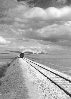 Italian Vintage Photographs ~ #Italian #Vintage #Photographs ~ Near Spinazzola Italy 1950s Photo: Fosco Maraini