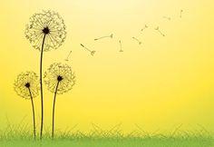 dandelion flowers vector – Item 2