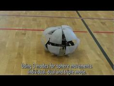 If you could built a MorpHex robot the size of a tennis ball, you'd have the ultimate dog toy.