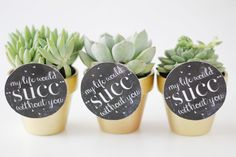 """DIY """"My Life Would Suck Without You"""" Succulent Valentine's Day Gift Idea with Printable"""