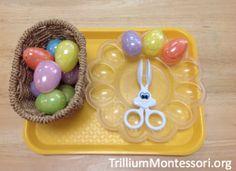 Transfer Plastic Eggs