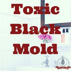 Mold allergies vary from person to person and while some people may be barely affected, others may experience year-round symptoms or have serious ongoing health issues after exposure. Toxic Mold Symptoms, Black Mold Symptoms, Black Mold Exposure, Toxic Black Mold, Mold Allergy, Sinus Drainage, Get Rid Of Mold, Homemade Cleaning Products, Cleaners Homemade