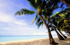Bilety lotnicze na Antiguę i Barbudę - Przewodnik Antigua i Barbuda - www.cp-online.pl