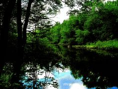 The Sudbury River in Ashland, Massachusetts once powered grist mills, paper mills, cotton mills, saw mills, emery mills, and blacksmith's trip hammers. Now, its serene beauty provides recreation such as fishing, canoeing, and kayaking.
