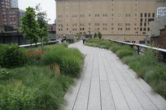 The High Line in Manhattan. An old, elevated train line converted to a park. A fabulous place with lots of grasses and sedges.