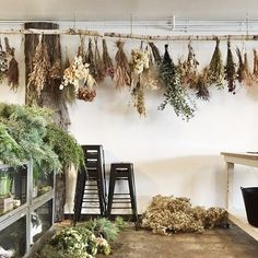 ideas-con-flores-secas-ramos-secando Once we approached the Flores & Prats organization, we wanted to target on the Deco Floral, Arte Floral, Floral Design, Vitrine Design, Room Deco, Bouquet, Drying Herbs, Dried Flowers, Planting Flowers