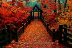 South Milwaukee, Wisconsin, 7 Bridges in the fall! Couple of blocks from my home...