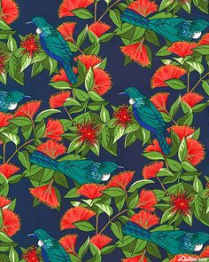 Tui birds nestled in Pohutukawa blossoms on navy background. Graphic illustration of the tui and blossoms. Drawing Projects, Art Projects, Thinking In Pictures, Summer Christmas, Xmas, Maori Designs, Nz Art, Kiwiana, Bird Art