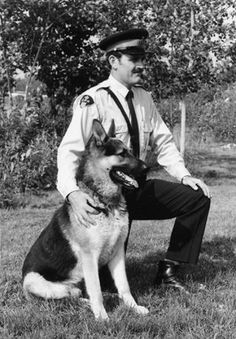 Cloud II was one of the most famous police dogs in Canadian history. In a brief four-year career, Cloud II and his handler, Constable Ray Carson, captured 123 fugitives and found countless missing children and lost hunters.