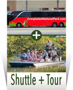 Everglades Airboat, Everglades National Park, River Of Grass, Airboat Rides, Local Hotels, Wildlife Park, Unusual Animals, Adventure Tours