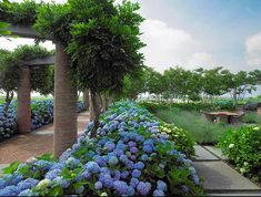Country garden by Hollander