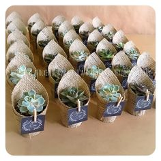 Wedding Favors for Guests, DIY Wedding Favors, Edible Wedding Favors, Wedding Fa… – Wedding Favors Tags Wedding Favors And Gifts, Creative Wedding Favors, Inexpensive Wedding Favors, Craft Wedding, Wedding Souvenir, Bridal Shower Favors Diy, Wedding Decorations, Succulent Wedding Favors, Succulent Gifts