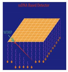 How's this for a tech mashup - Using DNA to detect dark matter. Just how they do it is simple but brilliant.