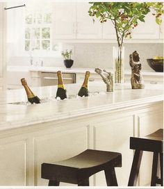 So awesome! Who doesn't need built-in wine chiller troughs?