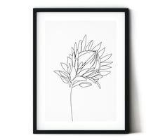 Items similar to Protea digital print. Home decor on Etsy - Modern Protea Art, Protea Flower, Ligne Continue, Australian Flowers, Australian Wildflowers, Simple Wall Art, Easy Wall, Botanical Line Drawing, Flower Outline