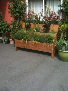 garden ideas---in front of trash cans if taller, need wheels, and paint white????