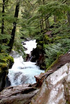 Glacier National Park is our third destination on our Canyons, Glaciers & Waterfall tour.