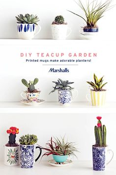 DIY teacup garden! Colorful teacups and coffee mugs make adorable little planters. Choose your favorite shapes and prints, then add soil and succulents in varying textures and heights. Arrange on a table or shelf, and put your creativity on display! Visit Marshalls to create your own little collection.