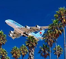 Airbus A380, Aircraft Photos, Commercial Aircraft, Airports, Airplane, Planes, Exotic, Korean, Beach