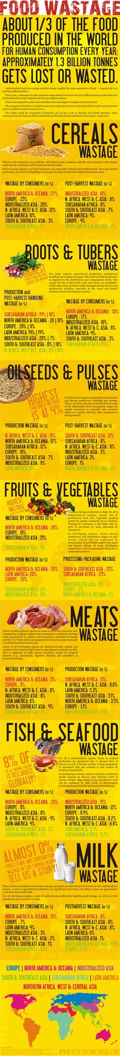 Food Wastage around the World Food Waste (Infographic)