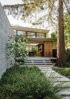 Feldman Architecture lifts The Sanctuary house above Silicon Valley site