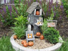 Perfect fall fairy garden! Fairy Kelly and the Driftwood Hideaway.