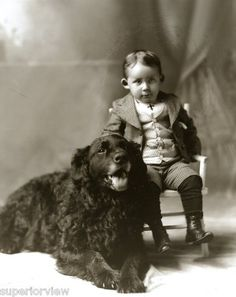 Vintage 1880 Little Boy With His Newfoundland Dog Black Newfoundland Portrait