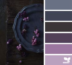 Color Serving | Design Seeds