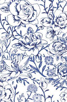 Flores azules en fondo blanco