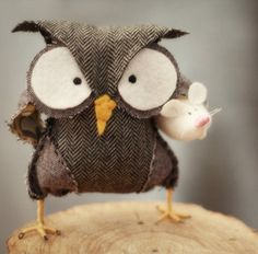 Mr owl and his pet mouse
