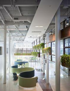 Perkins Eastman | Trillium Health Centre | Healthcare, Public, Lobby
