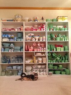 blue, pink & green Mostly Fire King. Vintage Kitchenware, Vintage Dishes, Vintage Glassware, Vintage Pyrex, Pyrex Display, Dish Display, Pink Pyrex, Kitsch, Pyrex Bowls