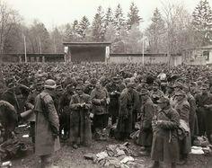 Rendição húngara. As tropas que se renderam ao 7º Exército são reunidas em…