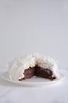 raw chocolate & coconut cake