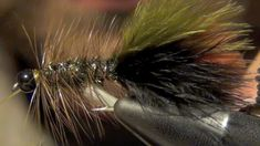 Thin Mint Woolly Bugger fly