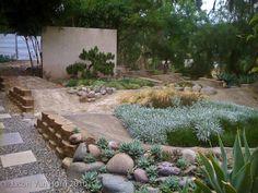 san diego pumptrack landscaped