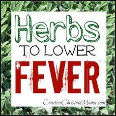 Herbs for Fever- Creative Christian Mama