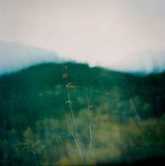 out of focus landscape