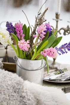 Hyacinths in a simple container