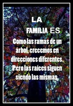 Favorite Quotes, Best Quotes, Love Quotes, Inspirational Quotes, Spanish Quotes Love, Motivational, Bien Dit, Quotes En Espanol, Frases Humor
