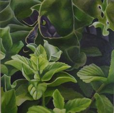 """Glenn of the Jungle"" - Commission - 40 x 40 cm Acrylic on Canvas."