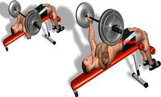 Top 13 Chest Exercises For Maximum Growth - True Bodybuilding - Page 7 Lower Chest Workout, Chest Workouts, Chest Exercises, Resistance Workout, Pilates Studio, Workout Regimen, Muscle Tone, Group Fitness, Bench Press