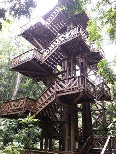 Bosque Alemão em Curitiba