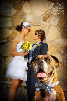 Lesbian wedding, Jason Kaczorowski Photography (aww, and Toby can wear a bow tie) Lesbian Wedding Photos, Lgbt Wedding, Dog Wedding, Wedding Pics, Dream Wedding, Wedding Ideas, Wedding Stuff, Wedding Wishes, Wedding Attire