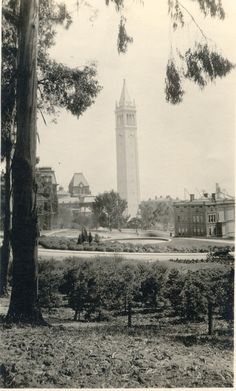 University of California, Berkeley Campanile (1924) Sourisseau Academy for State and Local History, California Digital Library
