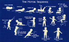 developmental postural control milestones